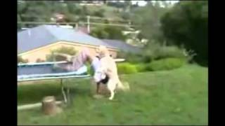 Trampoline Double Fail