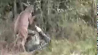 Deer vs Hunter- Epic Hunting Fail